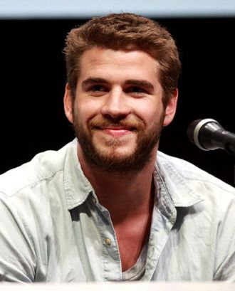 400px-Liam_Hemsworth_by_Gage_Skidmore